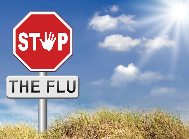 "Red stop sign with the word ""The Flu"" shown on a white sign below it"
